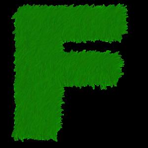 Vyjmenovaná slova po F